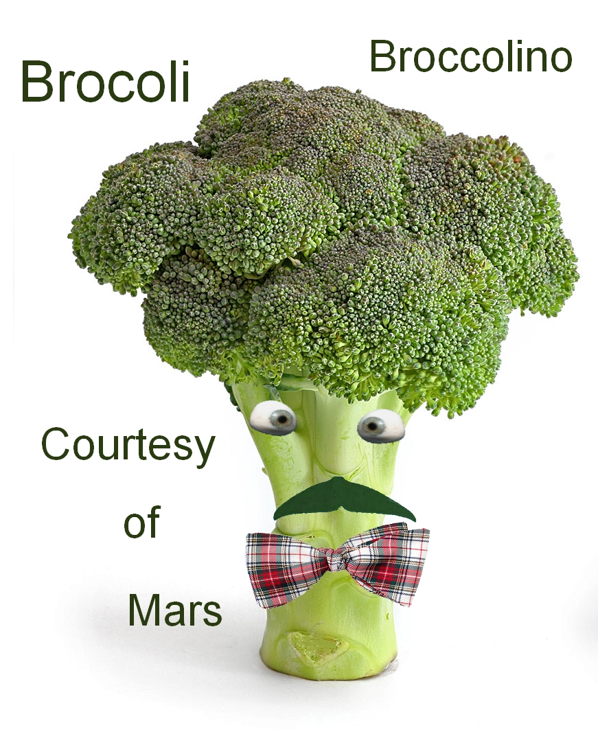 brocoliCourtesyfromMars